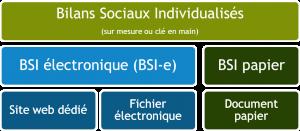 Bilan social individuel